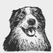 Perro feliz. border collie — Vector de stock