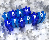 Creative 3D pieces of puzzle and word TEAM LEADER — Stock Photo