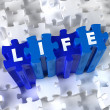 Stock Photo: Creative 3D pieces of puzzle and word Life