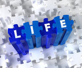 Creative 3D pieces of puzzle and word Life — Stock Photo