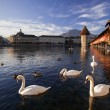 Lucerne, Switzerland, the Chapel Bridge — Stock Photo