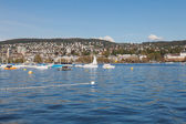 Lake Zurich & Zurich City — Stock Photo