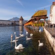 Stock Photo: Lucerne, the Chapel Bridge