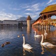Lucerne, the Chapel Bridge — Stock Photo #36867873