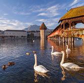 Lucerne, the Chapel Bridge — Stock Photo