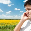 Handsome man in sunflower field making phone call — 图库照片
