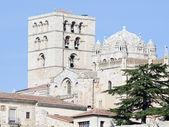 Panoramic Zamora — Stock Photo
