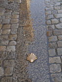 Symbol of the camino de santiago — Stock Photo