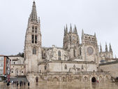Gothic Dome of Burgos Cathedra — Stock Photo