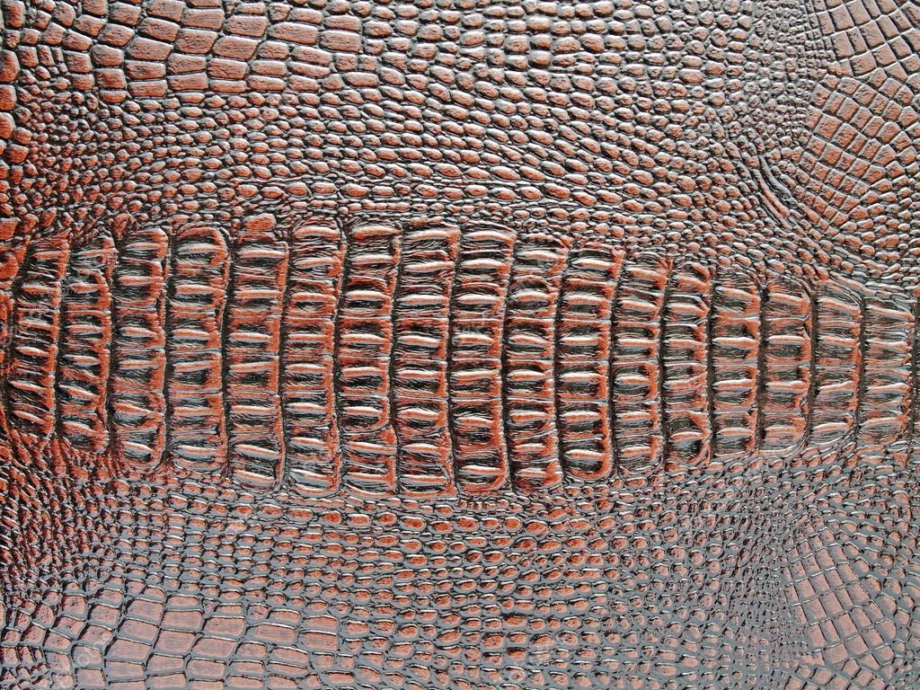 anaconda snake hd wallpaper