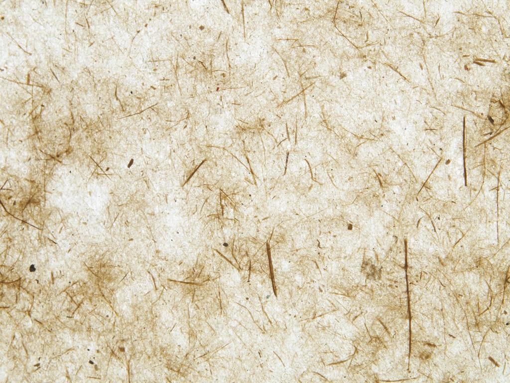 Textura de papel r stico fotos de stock roberaten for Papel de pared rustico