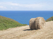 Cropland with hay bale on the coast of Asturias — Stock Photo