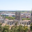 Gothic Cathedral world heritage site, Spain — Stock Photo #25358761