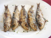 Fried sardines — Stock Photo