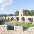 Roman-Medieval bridge — Stock Photo #30066365
