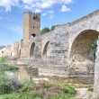 Stock Photo: Roman-Medieval bridge