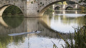 River Carrion in Palencia — Foto Stock