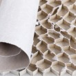 Stock Photo:  paperboard honeycomb bee