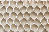 paperboard honeycomb bee — Stock Photo