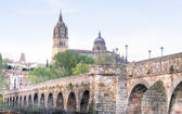 bridge leading to the Cathedral in Salamanca — Stock Photo