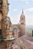 Cathedral (Catedral Nueva), Old City of Salamanca, Spain. — Stock Photo