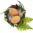 Easter nest with two eggs and feathers — Stock Photo #15705067