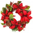 Christmas wreath with poinsettia on white background — Stok fotoğraf