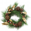 Stock Photo: Christmas wreath with poinsettion white background