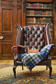 Traditional Chesterfield armchair — Stock Photo