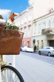 Bicycle with basket in the city — Stock Photo