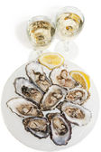 Oysters and white wine on white background — Stock Photo