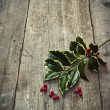 Twig of holly tree lying on old wooden floor - Stock Photo