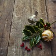 Twig of holly tree lying on old wooden floor — Stock Photo