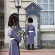 Grenadier guards wearing winter greatcoats — Stock Photo #16782941