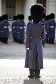 Grenadier guards wearing winter greatcoat — Stock Photo