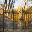 Stock Photo: Shut iron spiked gates