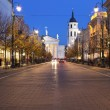 Gediminas Avenue in Vilnius at night — Stock Photo #16963985