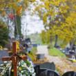 Stock Photo: Wooden cross on Christian cemetery