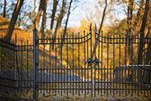 Shut iron spiked gates — Stock Photo