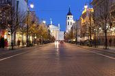 Gediminas Avenue in Vilnius at night — Stock Photo