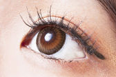 Female eye with brown contact lenses macro — Stock fotografie