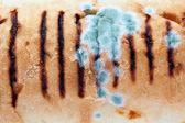 Verschimmelt weißbrot — Stockfoto