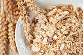 Bowl of muesli for breakfast — Stock Photo