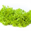 Fresh green salad lettuce — Stock Photo #25530561