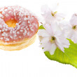 Glazed Donut — Stock Photo