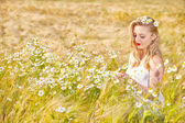 Blond girl on the camomile field — Stockfoto