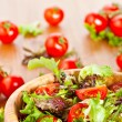 Mixed lettuce salad and tomatoes — Foto Stock