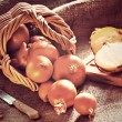Loose onions scattered from wicker basket — Stock Photo