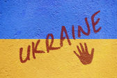Ukraine flag painted on old concrete wall with UKRAINE inscripti — Stock Photo