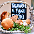 Stock Photo: Porcini mushrooms